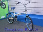 Folding Bike For Students Foldable Bicycle