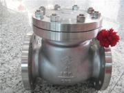 Stainless Steel Ball Check Valve Globe Valve From China