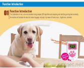 Dog Whisperer Translator