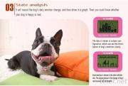 Dog Communication Machine