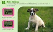 Dog Daily Necessities
