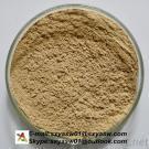 Green Coffee Bean Extract 50% Chlorogenic Acids