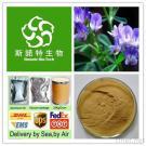Herbal Extract, Alfalfa Extract, Medicago Extract