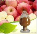 Pure & Natural Fruit Extracts Apple Powder