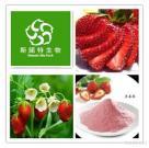 Fruits Enzyme Powder