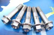 Grade5 M8 Titanium Hex Flange Bolts For Motorcycle