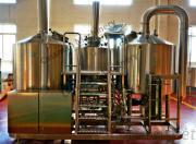 300l 500l brewpub brewing equipment for hotel