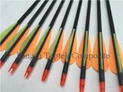 Hunting Arrow, Compound Bow Archery Arrow