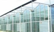 아름다운 실제적인 Venlo 유리 온실