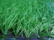 Football Grass Turf