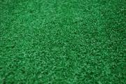 Cricket Grass Turf