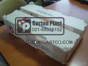 corrugated pp sheet fruit box-corrugated pp sheet vegetable box-PP Plastic box