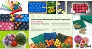 Het plastic Dienblad van het Tussenvoegsel van het Fruit
