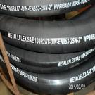 DIN20022 EN853 2SN Hydraulic Hose