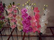 La orquídea florece artificial