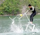 Wasser-Vogel/Aquaskipper