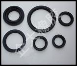 TCautomotive rubber OilSeal