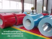 Ppgi Steel Coil/Color Coated Coils