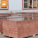 Black/Brown Film Faced Plywood Construction Formwork Shuttering Plywood With Poplar Core