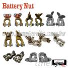 Battery Nut