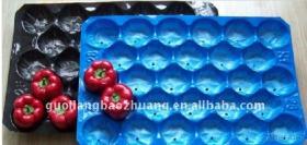 Vassoio a gettare della verdura e della frutta