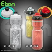 CB-15163T Insulated Bottle