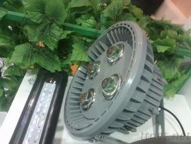 Explosion Proof Light 15W To 180W