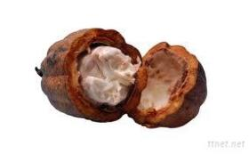 High Quality Natural Cocoa Butter