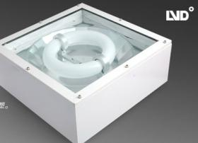 Induction Lamps Of Explosion Proof Lights