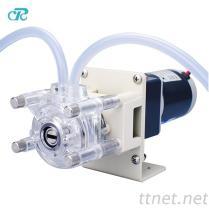 DC 모터 작은 OEM 연동 펌프