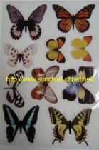 Magic Sticky Stickers & Alphabets Stickers