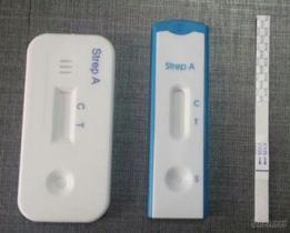 Streptobakterie ein schneller Test
