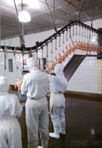 家禽の鶏のアヒルの虐殺家の食肉処理場装置