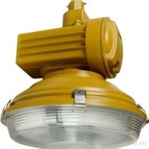 Explosion Proof Induction Lighting MX-YQL120