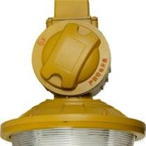 Explosion Proof Induction Lighting MX-YQL65