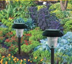 Het zonne Aangedreven Licht van de Tuin met Heldere leiden van 1 Stuk