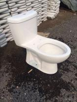 Ééndelige Washdown van het Toilet Riem