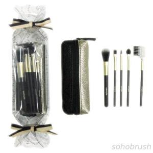 2696BS/PS 5-pc make up brush w/ bag set