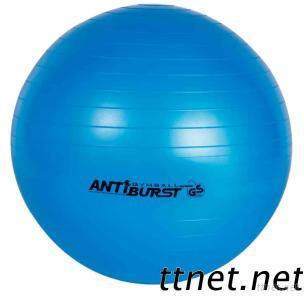 Anti-Burst Gym Ball (GS approval)