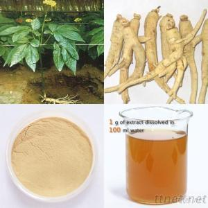 Low Residue Panax Ginseng Root Extract 5%~65%HPLC