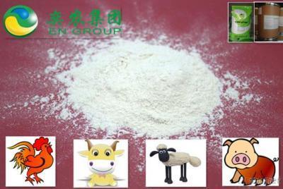 Feed Enzyme Additive Supplement Xylanase 10 000U/G
