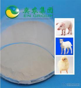Feed Additive Enzyme Cellulase 20 000U/G