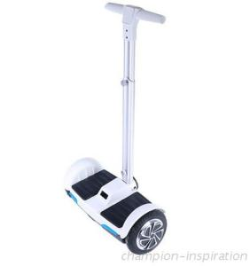 F1 Electric Scooter Self Balance with hand
