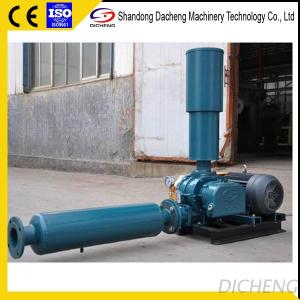 DSR Shandong Manufacturer Roots Blower For Sewage Treatment
