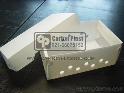 Plastic box for carrying live Crayfish and lobster