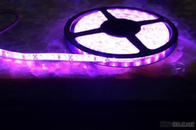 Waterproof SMD5050 Purple Led Strip Lights