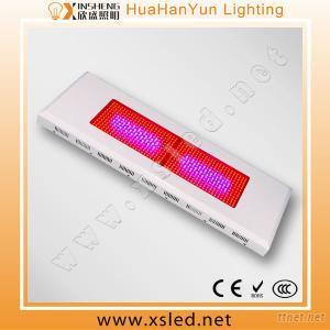 High Power 600W Hydroponic Led Grow Lighting