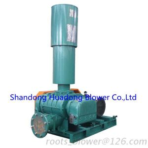 Huadong Airus Roots Blower Positive Displacement Blower Rotary Lobe Blower