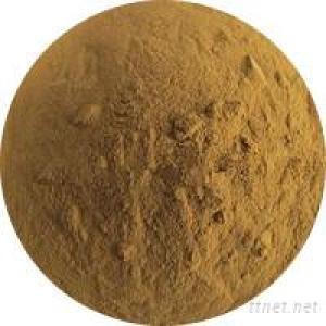 Moringa Leaf Extract Powder