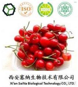 Acerola Cherry Extract 17% -25%
